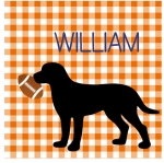 Football Dog - Orange Gingham