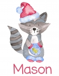 Raccoon Santa